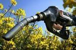 Agrocarburants l'analyse Patrick Sadones (Confédération Paysanne)