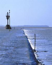 beavoir-sur-mer site unique exceptionnel guerre vendee revolution royaliste balise bois banc de sable voirie dde ligne reguliere