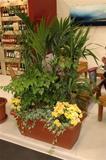 fleur fleurs plantes hall accueil entreprise interieur maison vacnace conge absent