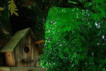 Un Nichoir En Bois En Terre Cuite Utile Et Joli Pour