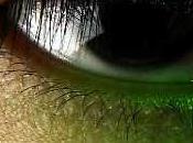 Green Hornet, film immanquable