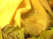 Aumonière foie gras
