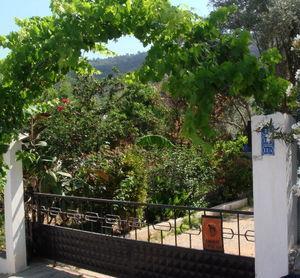 Feng Shui au jardin - Esprit Jardin