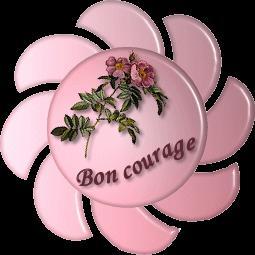 http://a10.idata.over-blog.com/0/27/27/21/bon_courage.gif