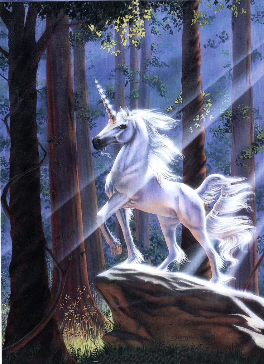 http://media.paperblog.fr/i/249/2497580/secret-licorne-L-1.jpeg