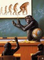 L'évolution dans le bon ou mauvais sens