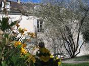 """Musée Montmartre mise vente projets privés""""...."""