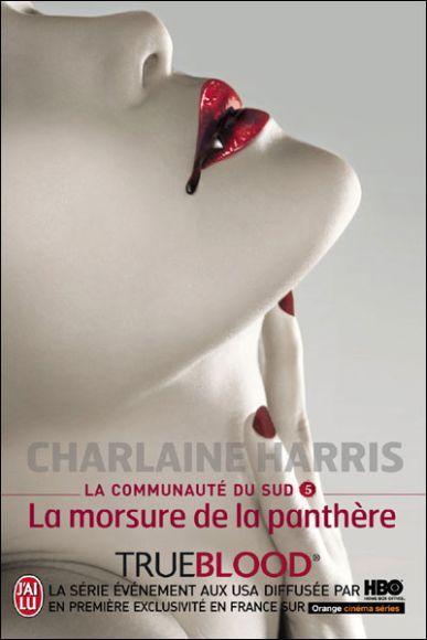 http://bazar-de-la-litterature.cowblog.fr/images/Livres/communautedusud5.jpg