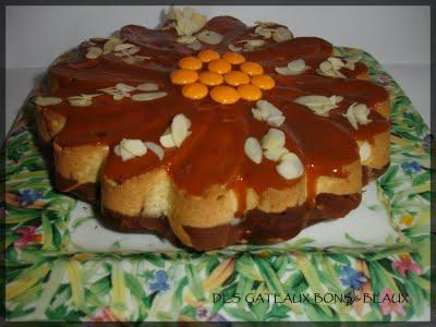 CAKE MARBRE CHOCOLAT/VANILLE