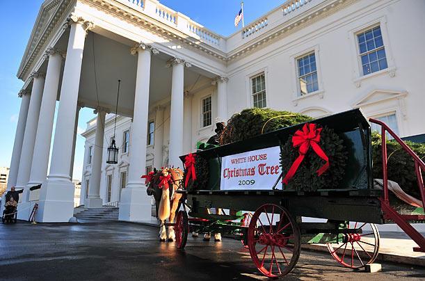 Noël à la Maison Blanche