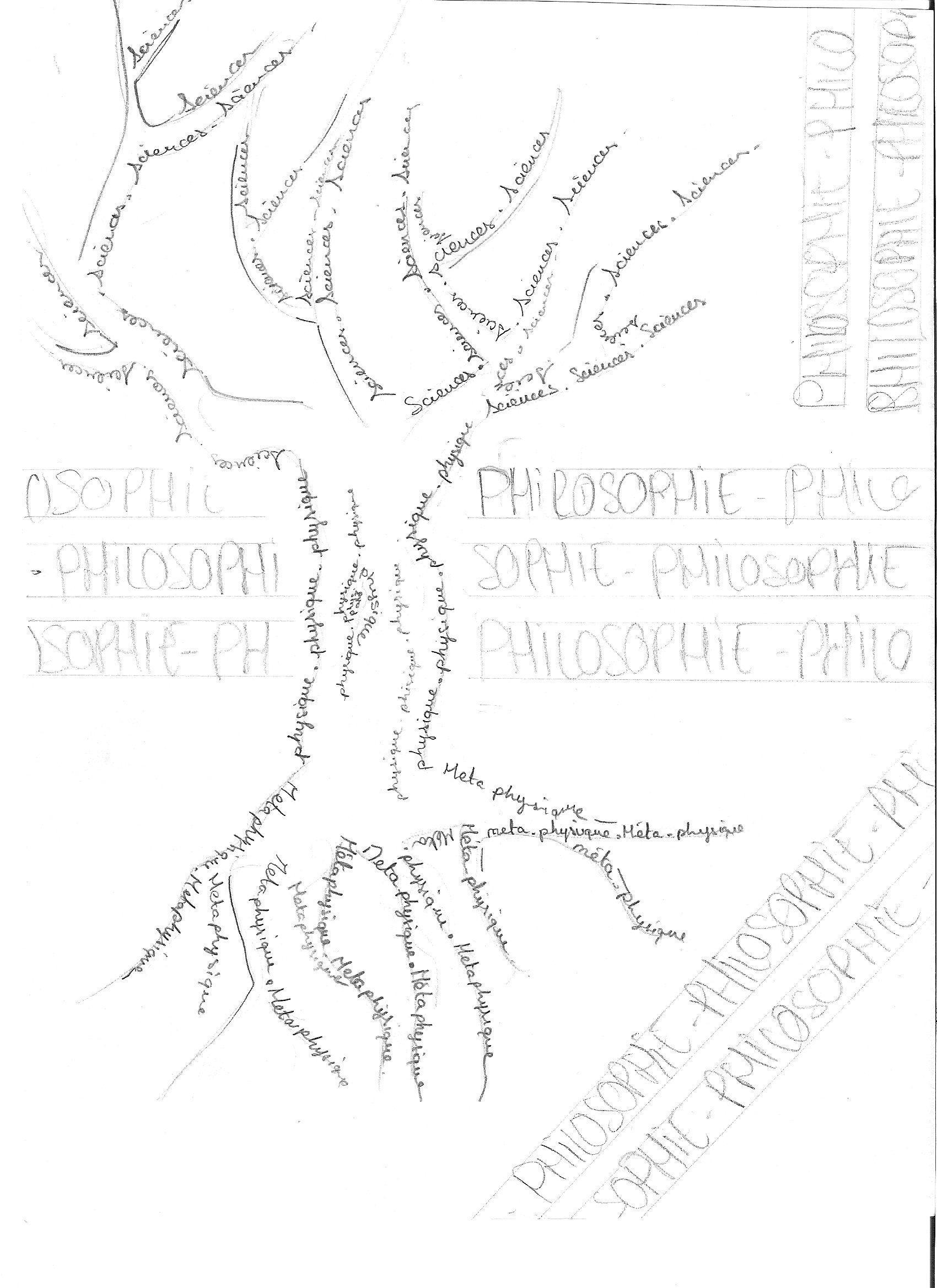 arbre-marina-cecconi.1254863612.jpg