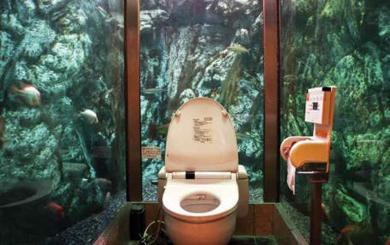 Déco des toilettes !   À Découvrir