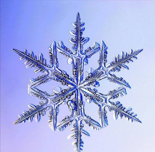 Flocons de neige paperblog - Vrai flocon de neige ...