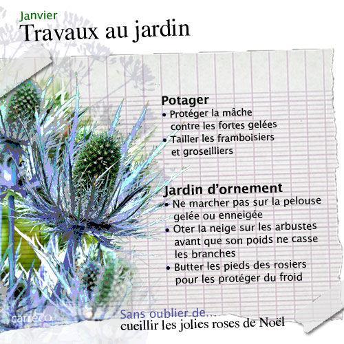 http://media.paperblog.fr/i/267/2676544/travaux-janvier-potager-jardin-dornement-L-1.jpeg
