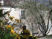euros pour musée Montmartre