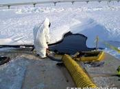 2750 sites sont pollués Arctique