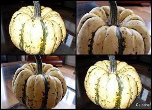 2010-01-13-sweet-duplin.JPG