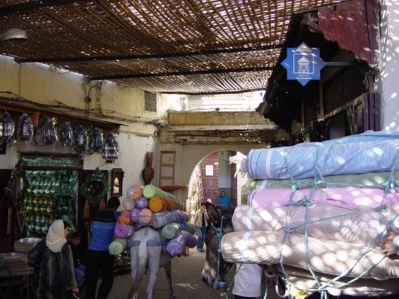 Anes transportant du tissu à Fès el Bali