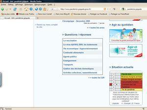 H1N113JANVIER2010