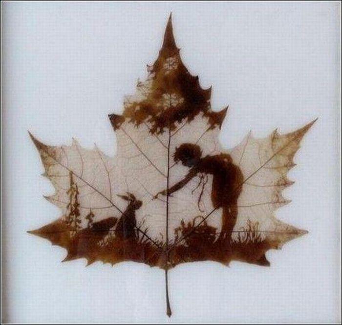 dessins-feuilles-arbres-03
