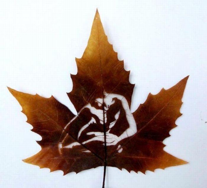 dessins-feuilles-arbres-08