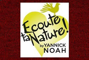 yannick noah lance sa marque de cosm tiques bio d couvrir. Black Bedroom Furniture Sets. Home Design Ideas