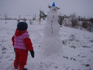 The bonhomme de neige