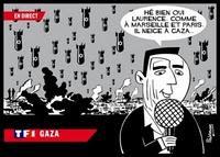 Les sionistes se manifestent sur le net