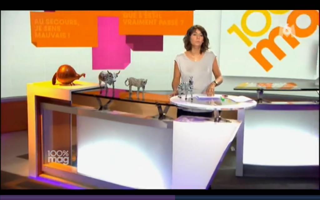 M6 100% présentée par Estelle Denis : les animaux dans la décoration