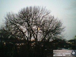 disque or lune janvier 02012010004
