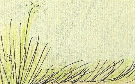Anna de Sandre - Un régal d'herbes mouillées - Version 2