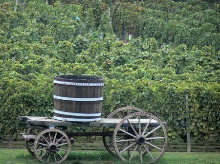 paysages-du-bourbonnais-12