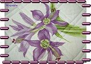 Tag violets2