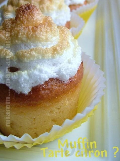 muffin Affichage Web grand format