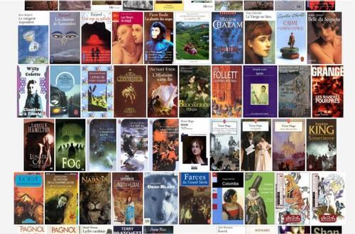 http://bazar-de-la-litterature.cowblog.fr/images/Autres/MaPAL.jpg