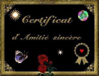 http://bazar-de-la-litterature.cowblog.fr/images/Autres/certificat.jpg
