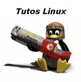 Résoudre le problème de la sortie «casque audio» des Medion/Lifetec MD96500 sous Ubuntu 9.10