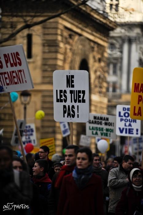 marche pour la vie 2010