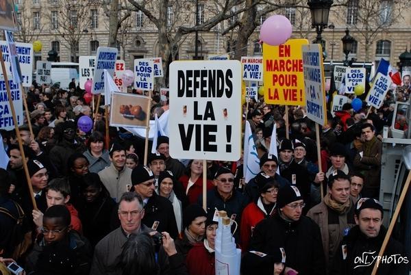 marche pour la vie 2010 01