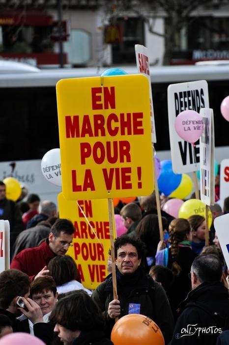marche pour la vie 2010 14