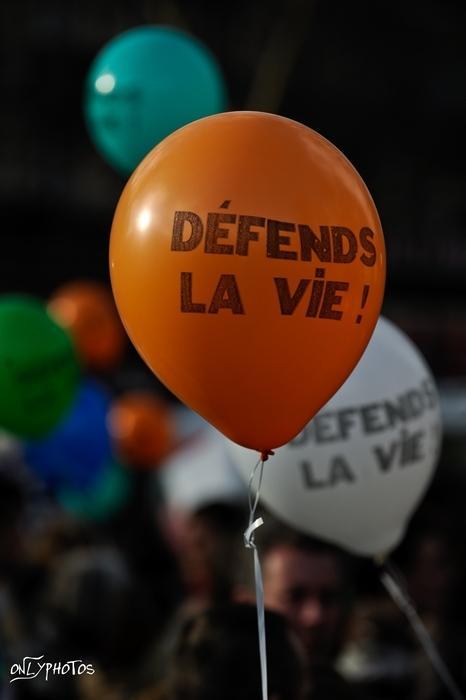 marche pour la vie 2010 13