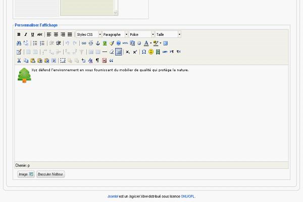 Tutoriel sur la création d'un module HTML personnalisé sous Joomla.