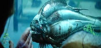 Watch This: Alexandre Aja's Piranha 3-D First Teaser Trailer  Read more: http://www.firstshowing.net/