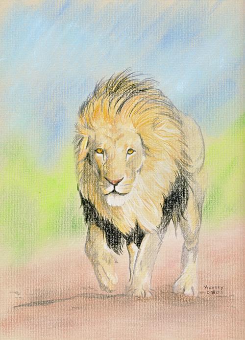 Lion Aux Crayons De Couleur A Lire