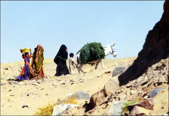 yemen-timna.1263303845.jpg