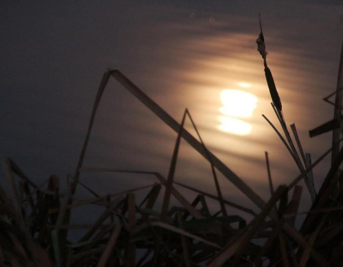 Le halo lumineux cristal de la lune (Joseph Guglielmi)