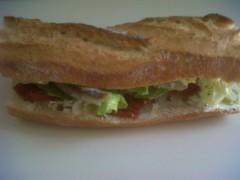 sandwich_jan10.JPG