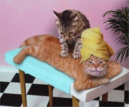 Stress : les bienfaits du massage