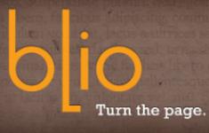 Le piratage des livres numériques en 2010
