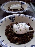 LENTILLES VERTES du PUY en salade et OEUF POCHé